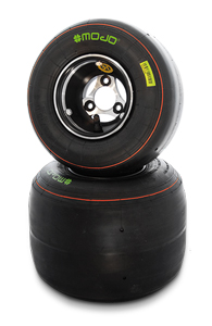 Rotax Mojo Tires