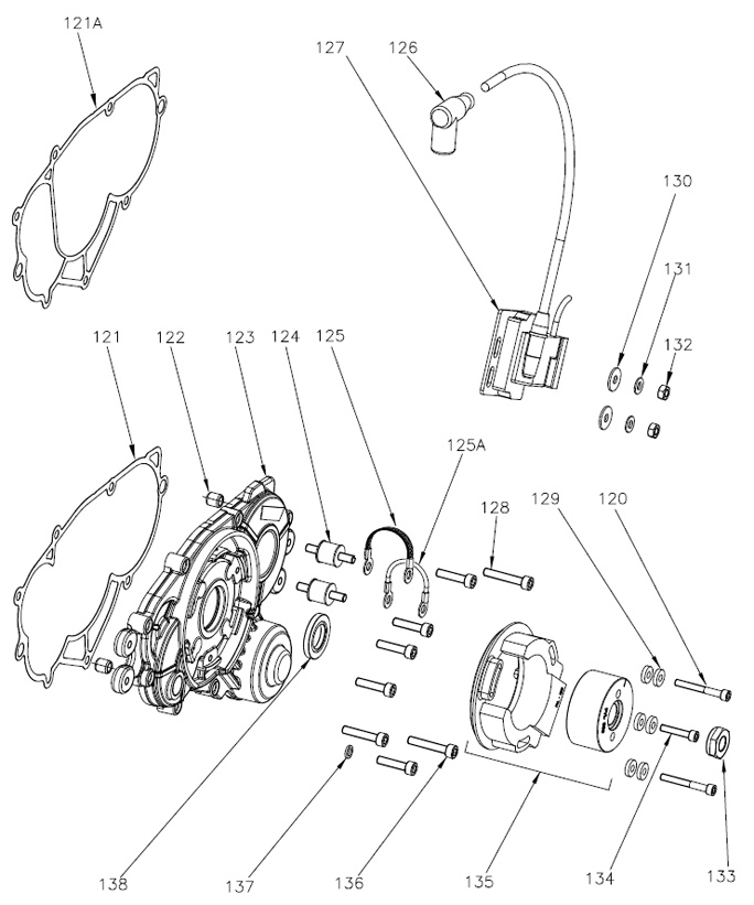 Rok GP Ignition Parts