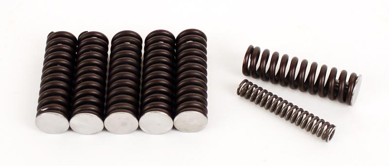 2148 SMC Enduro Axle Clutch Spring Kit