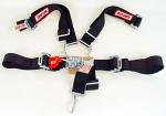 29064 Simpson 5 Point Seat & Harness Kit, Wrap Around