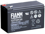 FIAMM OEM Drycell Battery for Leopard, X30 and Rok TT
