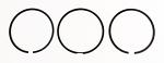 26. Briggs Animal Piston Ring Set