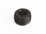 306100 DXL Oil Plug