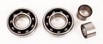 6205-C4 FAG Nylon Main Bearing and Crank Saver Sleeve Kit