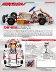 Birel AR28Y Sportsman Kart