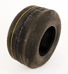 Raptor Slick Tire 10x4.50-5